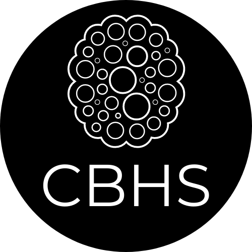 CBHS, Stephanie Chambers, MS, LPC Depression and Anxiety Therapist in Southlake, TX